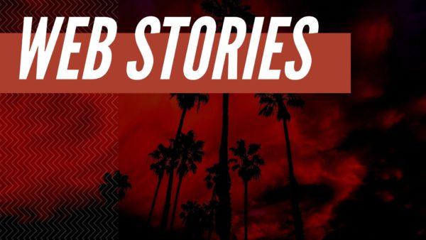 Web Stories for WordPress